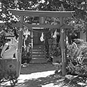Shinto Shrine, 1930s